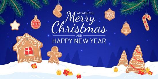 *Fijne feestdagen en een goed 2021!! *